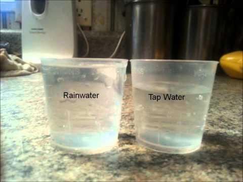 rainwater vs tapwater