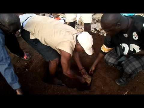 Central African Republic / Root cellar preparation