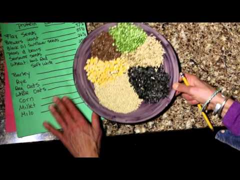 CHICKEN FEED FACTS AND SECRETS