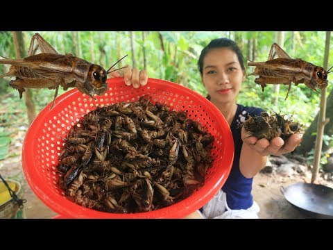 Yummy cooking Crickets recipe - Cooking skill
