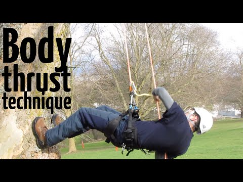 Basic tree climbing techniques: How to do the body thrust ascent