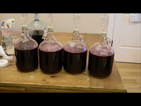 How To: Home Brewing Wine ~ Home Fermenting Wine ~ Make Your Own Wine