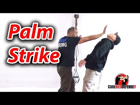 How to Palm Strike - Self Defense Tips