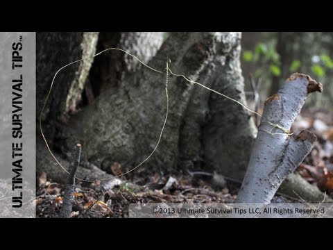 How to Make a Basic SNARE Trap with Paracord or Wire - Catch Your Own Survival Food