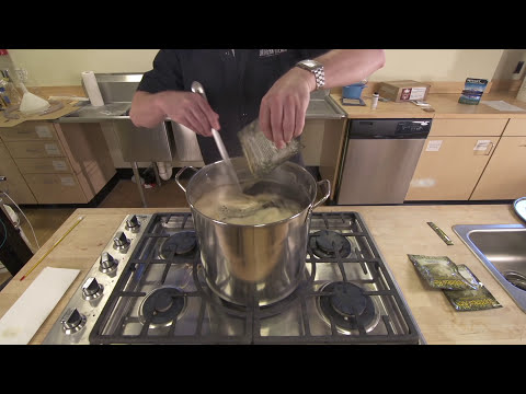 Homebrewing Beer for Beginners: How to Make Beer at Home