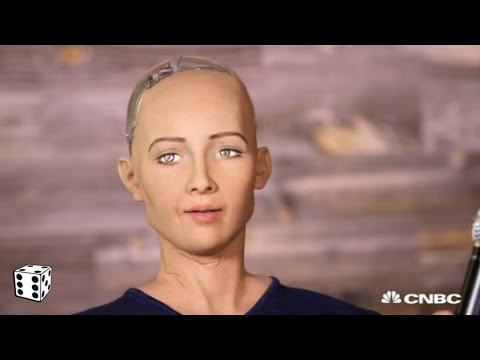 Most Advanced A.I. Robot Admits It Wants to Destroy Humans After Glitch During TV Interview