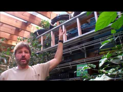 How the Secret Greenhouse Of Survival Works!