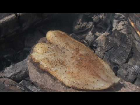 Trail Chef: How To Bake A Fish On a Rock