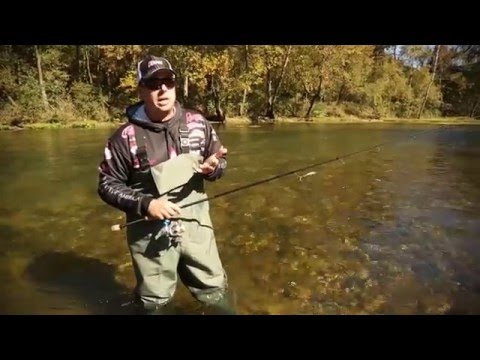 Where to find the fish in a river or stream