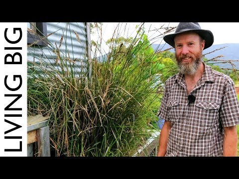 Simple Permaculture-Based Grey-Water Treatment System