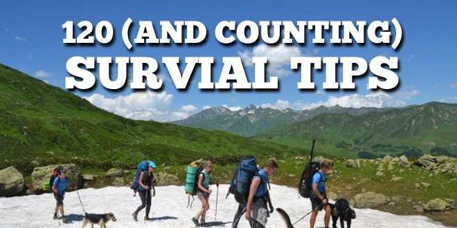 survival tips logo