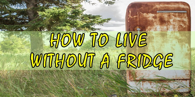 how to live without a fridge logo