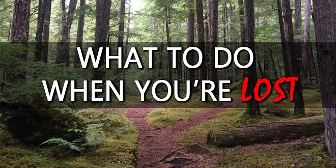what to do when you're lost logo