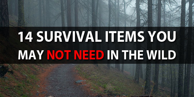 survival-items-you-may-not-need-in-the-wild