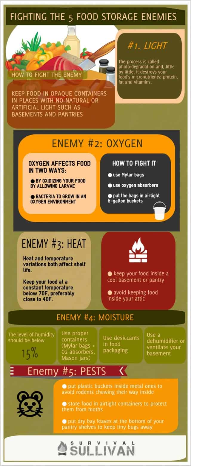 food storage enemies infographic