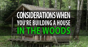 house-in-the-woods