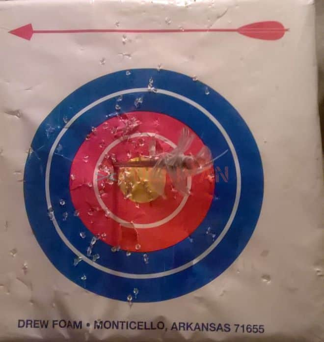 water bottle fletched arrow in target