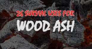 wood ash uses logo