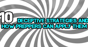 deceptive strategies logo