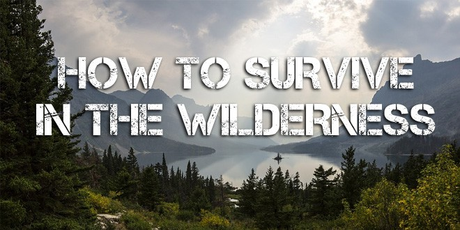 here s how to survive in the wilderness survival sullivan