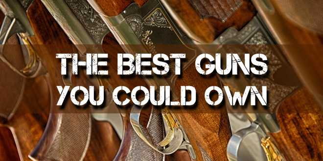 The best guns you could own for survival survival sullivan