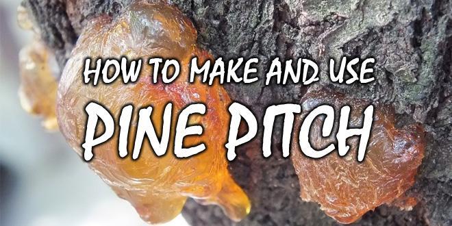pine pitch logo