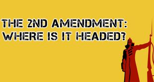 2nd amendment logo