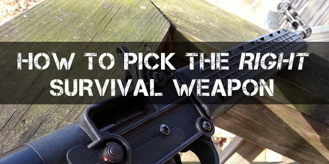 choose right weapon logo