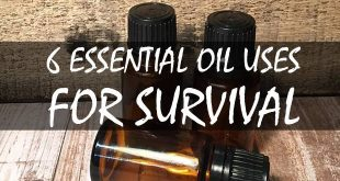 essential oil uses featured image