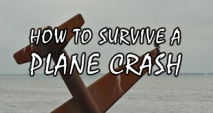 survive plane crash logo