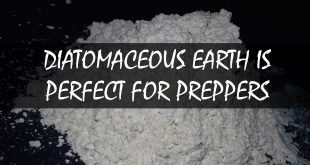 diatomaceous earth logo