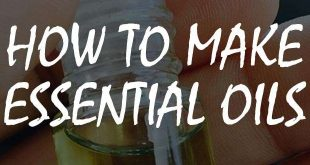 how to make essential oils logo