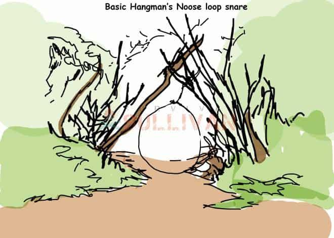 basic hangmans noose loop snare