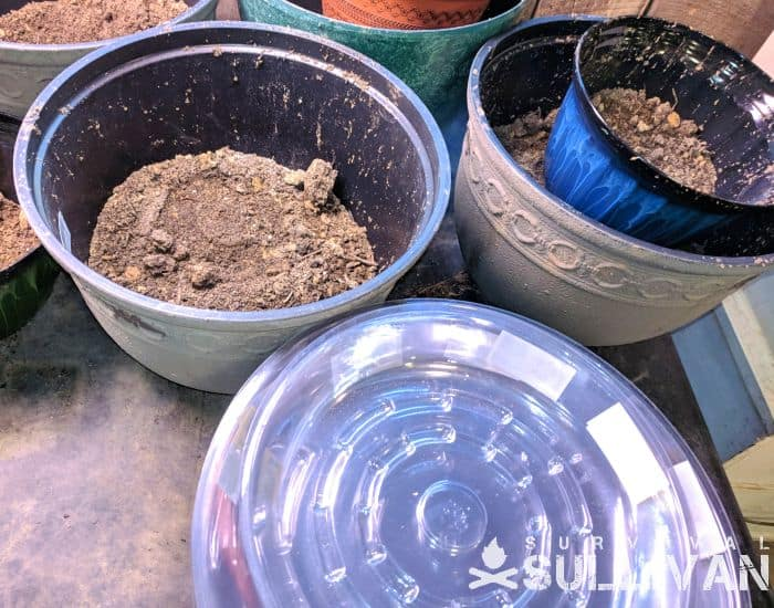 containers filled with soil ready to plant