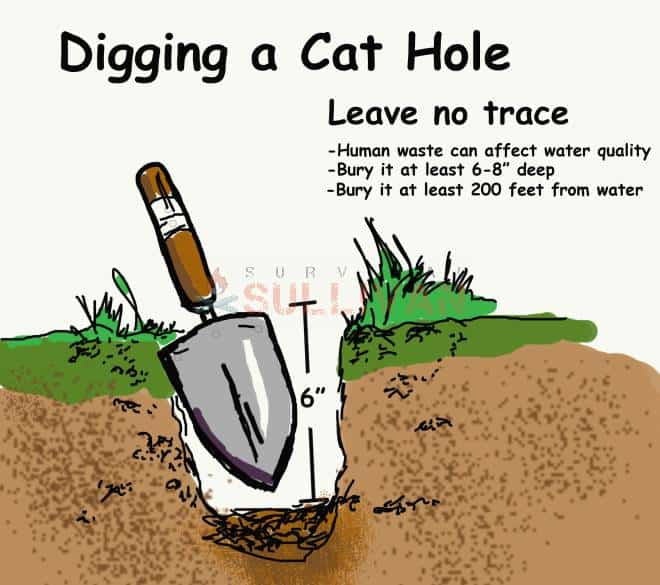 digging a cat hole