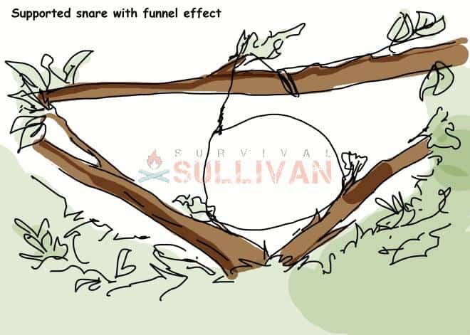 funnel loop snare