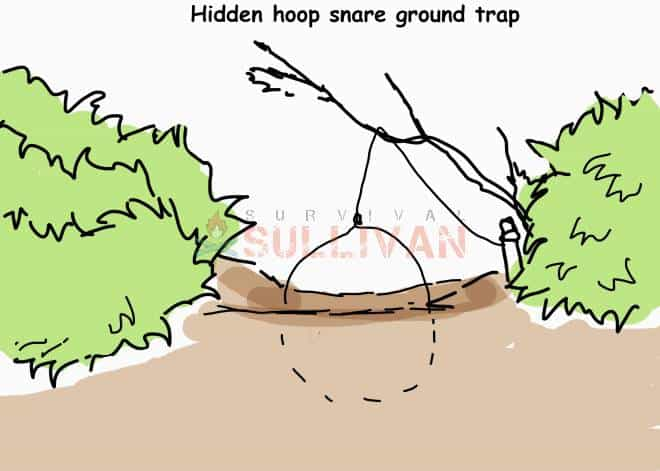hidden hoop ground trap