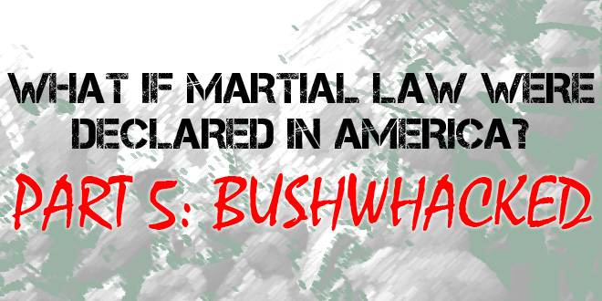 martial law fiction ch 5