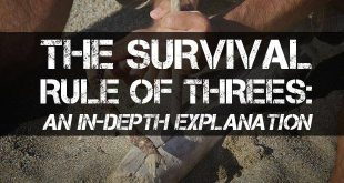 survival rule of threes logo