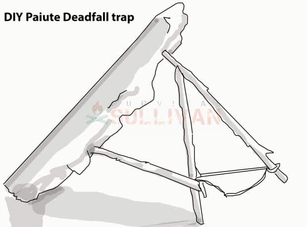 DIY Paiute Deadfall trap paiute complete