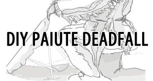 diy paiute deadfall trap featured image