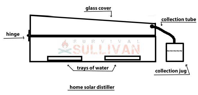 home solar still