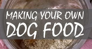 making your own dog food logo
