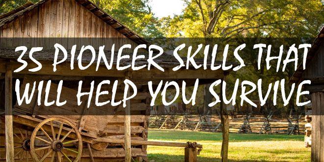 pioneer skills logo