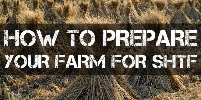 prepare your farm for shtf