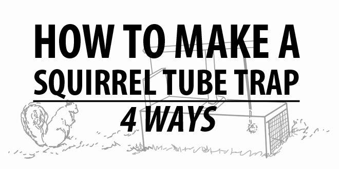 squirel tube traps