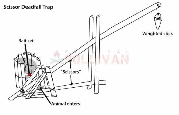 Scissor Deadfall Trap