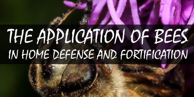 application of bees home defense