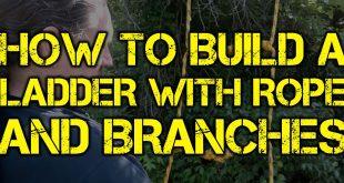 build a ladder logo blog