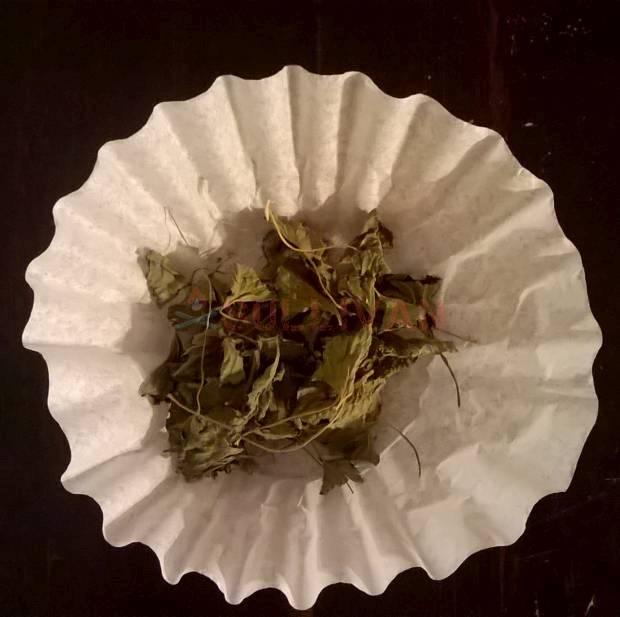 dried dandelion leaves